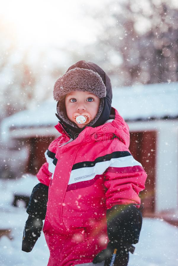 Toddler Boy Wearing Red and Black Winter Jacket and Gray Ushanka Hat Standing on Snow Covered Field stock photo