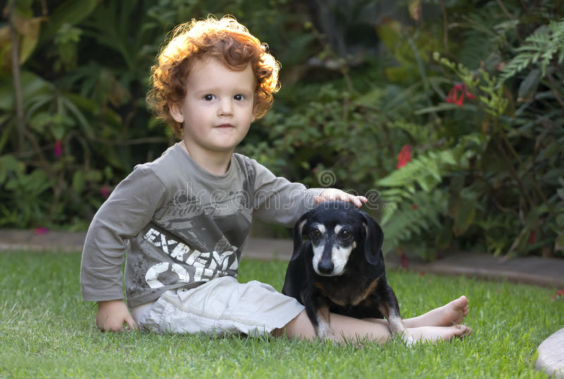 Toddler and dog sitting in garden. A young boy with his pet dog sitting on a green lawn in the garden with plants in the background stock image