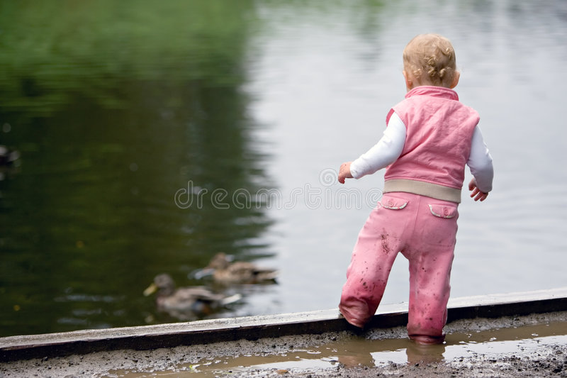 Toddler beside duck pond stock photos