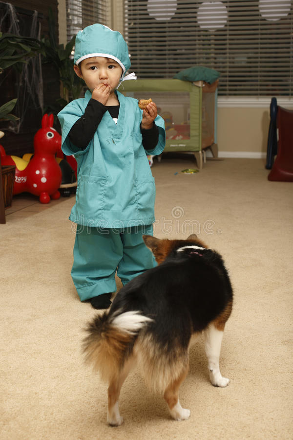 Download Toddler eating cookie stock image. Image of cookie, surgeon - 11535435