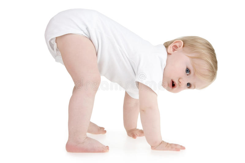 Toddler on four royalty free stock images