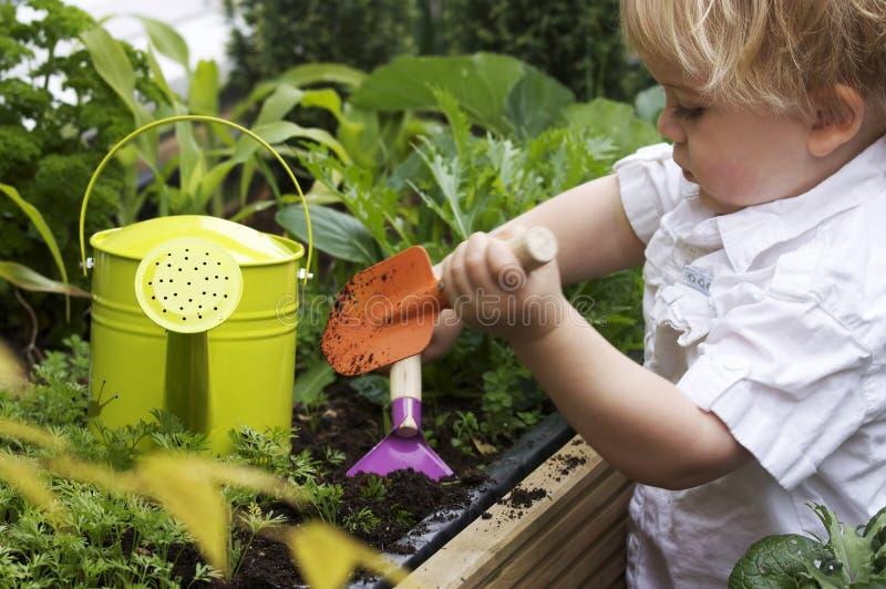 Toddler gardening stock image