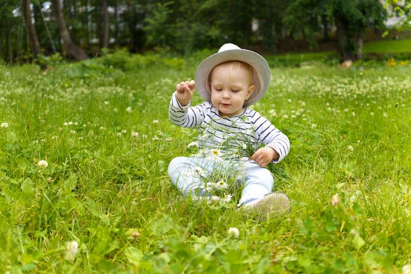 Toddler in the hat of an adult with a bouquet of camomiles sitting in the grass on a glade of summer park royalty free stock photography