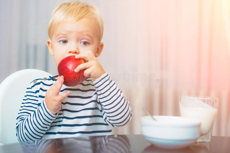 Toddler having snack. Healthy nutrition. Vitamin concept. Child eat apple. Kid cute boy sit at table with plate and food stock photography