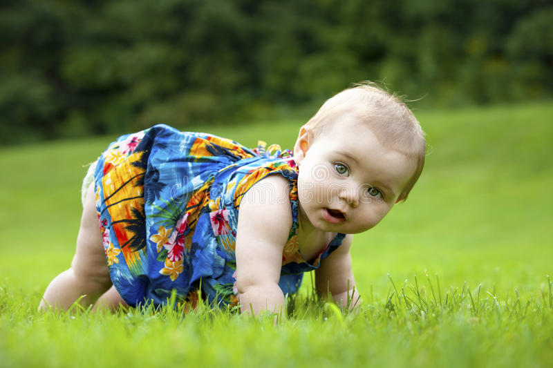 Toddler Japanese-American Learns to Crawl