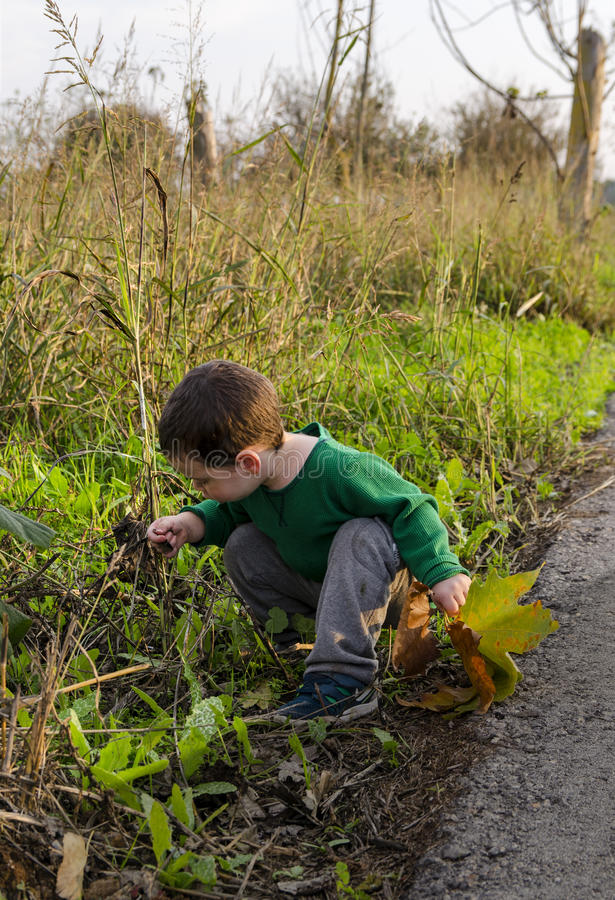 Toddler kneeling at nature stock photography