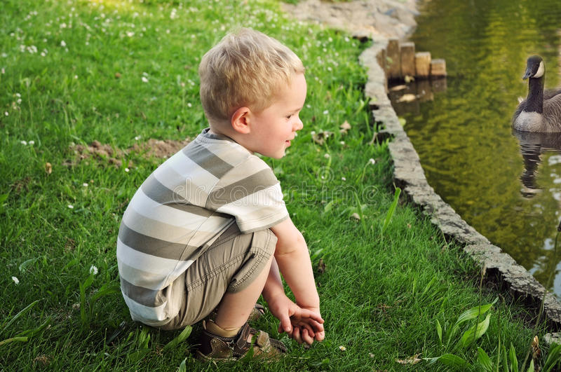 Download Toddler stock photo. Image of crouching, grass, duck - 31496050