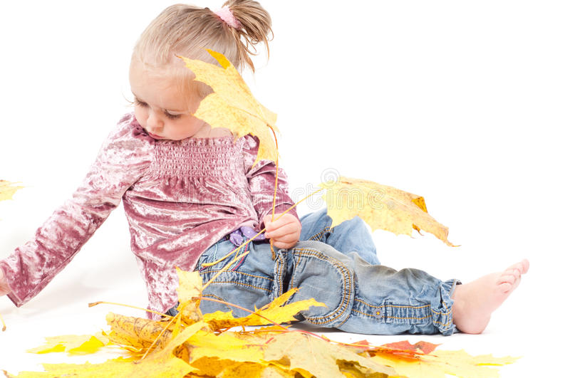 Download Toddler with maple leaves stock image. Image of photo - 12555289