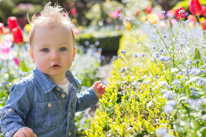 Toddler in the park stock photos