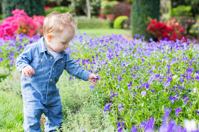 Toddler in the park royalty free stock image