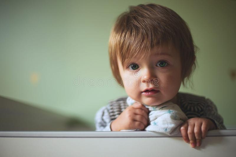 Toddler portrait royalty free stock photography