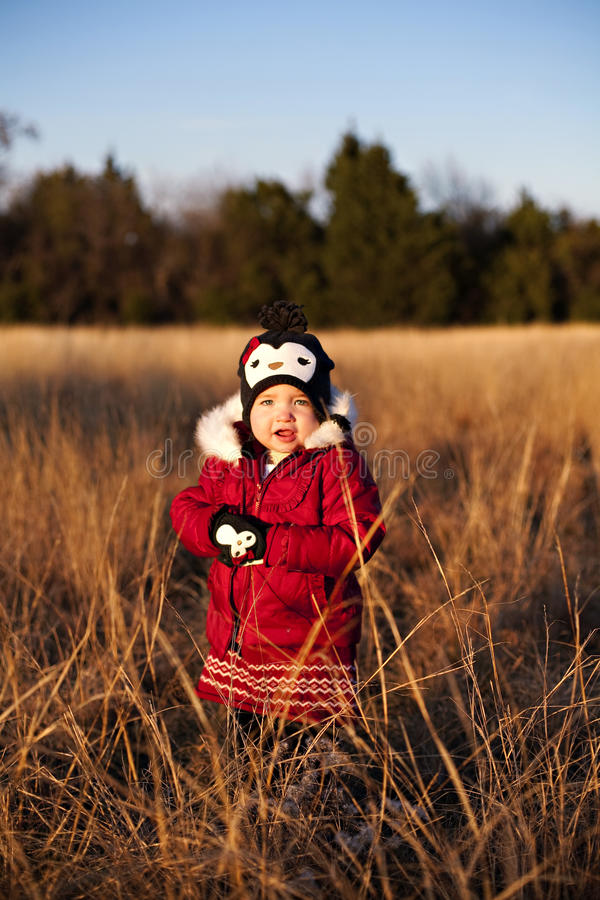Free Toddler Posing In A Field At Sunset Royalty Free Stock Photo - 17323465