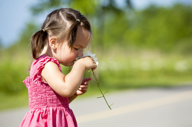Toddler smelling flower stock photography