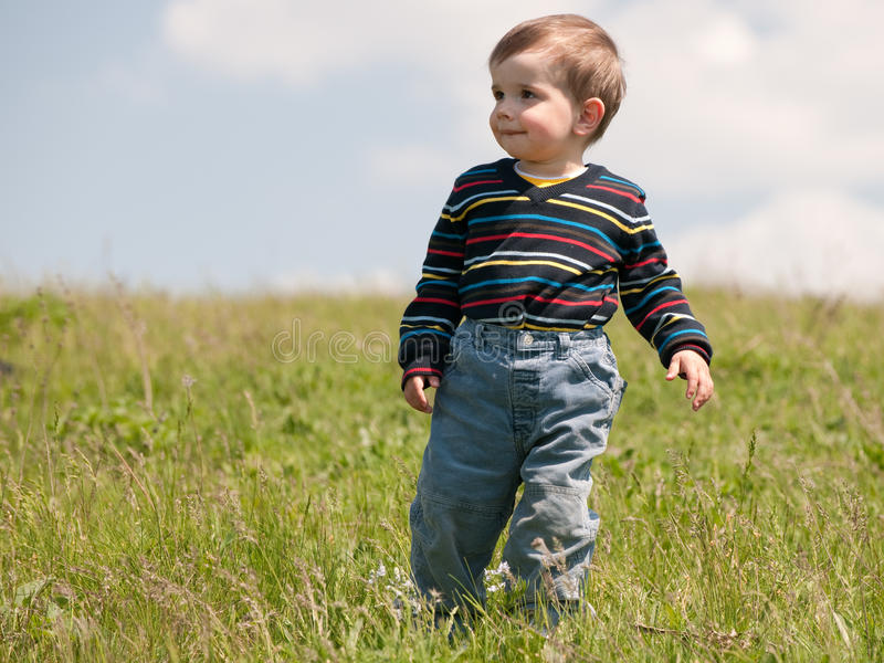 Toddler in the summer meadow stock photography