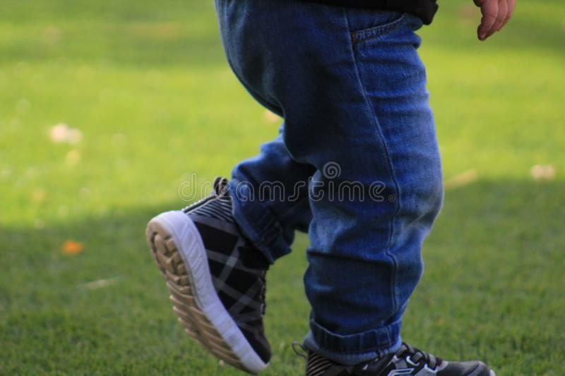 A Toddler Walking Across the Grass. A toddler`s legs walking across the grass.  2 yr old on artificial grass royalty free stock photography