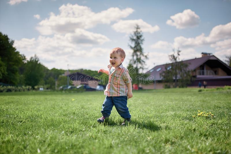 Toddler walking on the green lawn at sunny day.  stock photography