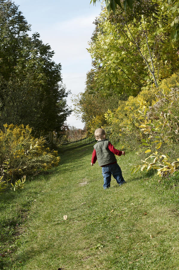 Toddler Learning to walk. Learning to walk. Boy walking in a trail. Toddler walking in a trail. Child walking around trees royalty free stock photos