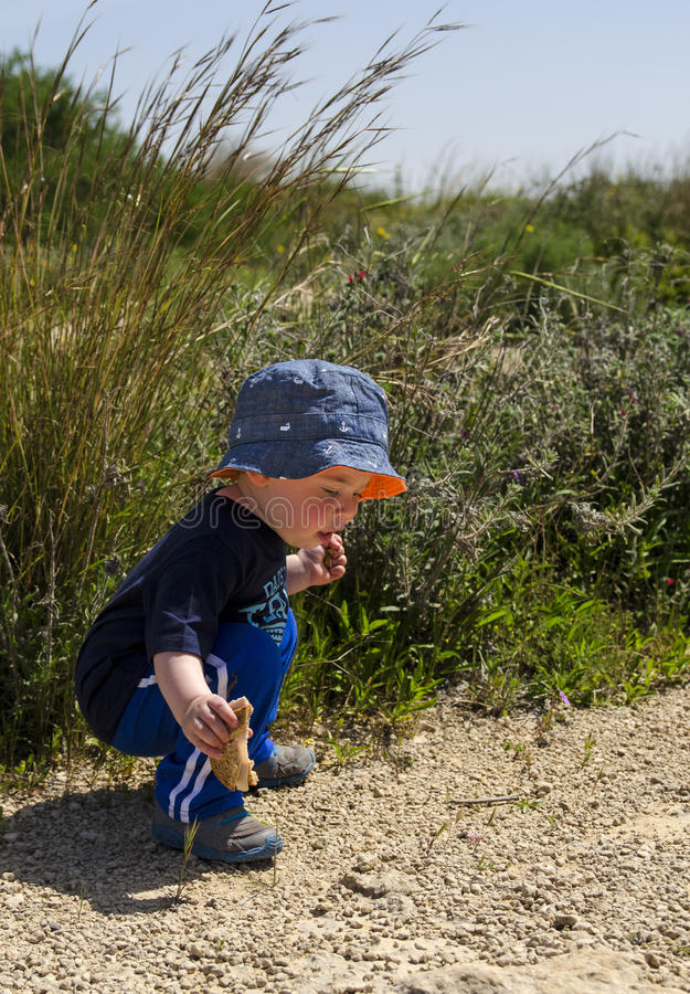 Toddler wearing a hat at nature reserve royalty free stock photography