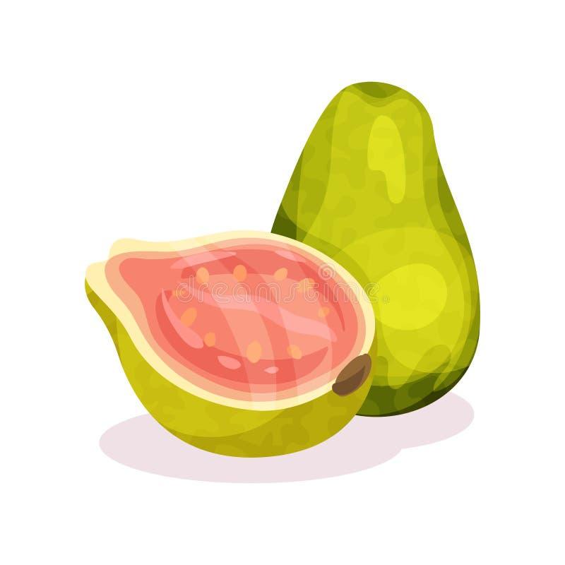 Todo e metade da goiaba fresca Fruta exótica Produto orgânico Nutrição saudável Projeto liso detalhado do vetor ilustração do vetor