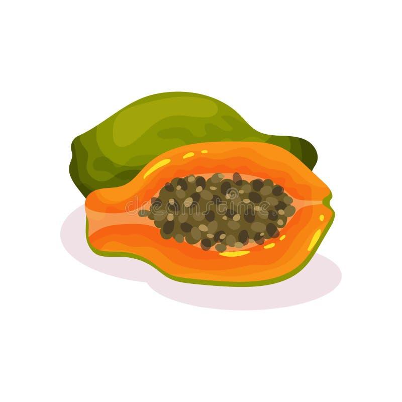 Todo e metade da papaia madura Fruto exótico saboroso Alimento biológico Produto de Eco Ícone liso detalhado do vetor ilustração do vetor