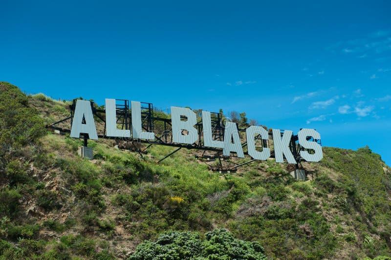 Todos los negros - campeones del mundo foto de archivo libre de regalías