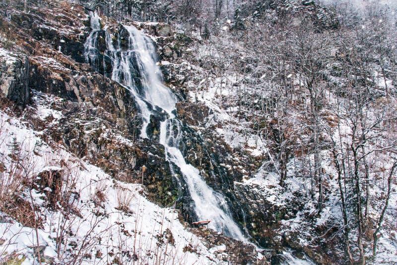 Todtnauerwaterval bij wintertijd Zwart Bos, Duitsland royalty-vrije stock foto