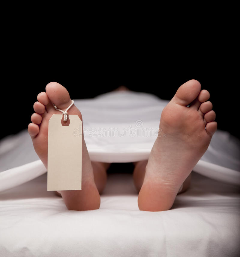 Download Toe tag stock image. Image of medical, lifeless, healthcare - 9751927
