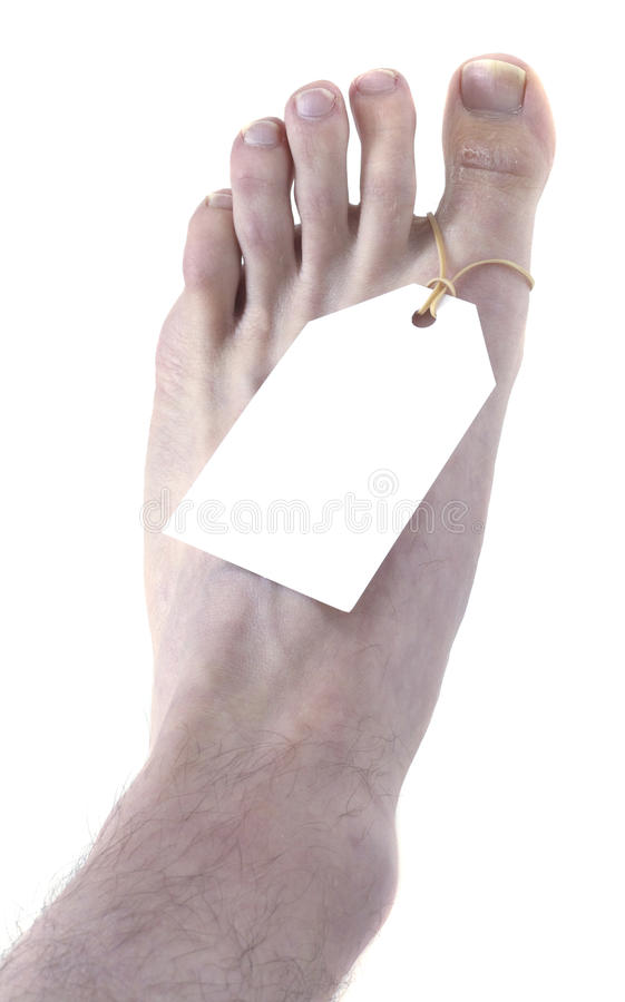 Download Toe Tag Isolated on Black stock photo. Image of foot - 18546660