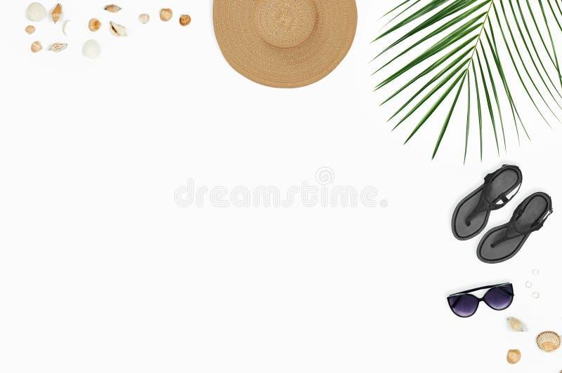 toebehoren: zonnebril, hoed, sandals met palmtakken en shells stock afbeelding