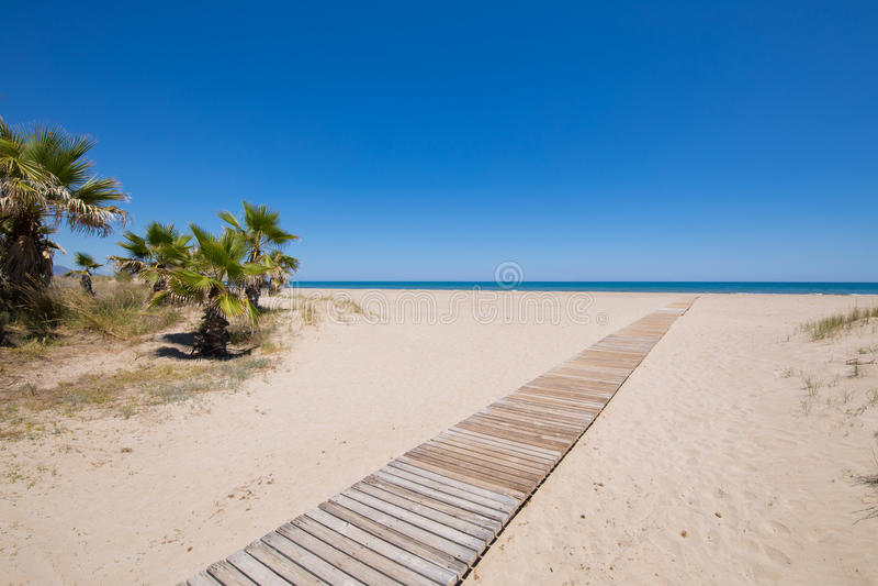Toegang tot strand in Castellon met palmen en houten voetpad royalty-vrije stock foto's