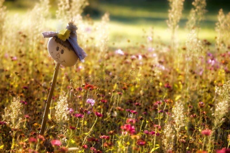 Toegankelijke Vogelverschrikker stock foto's