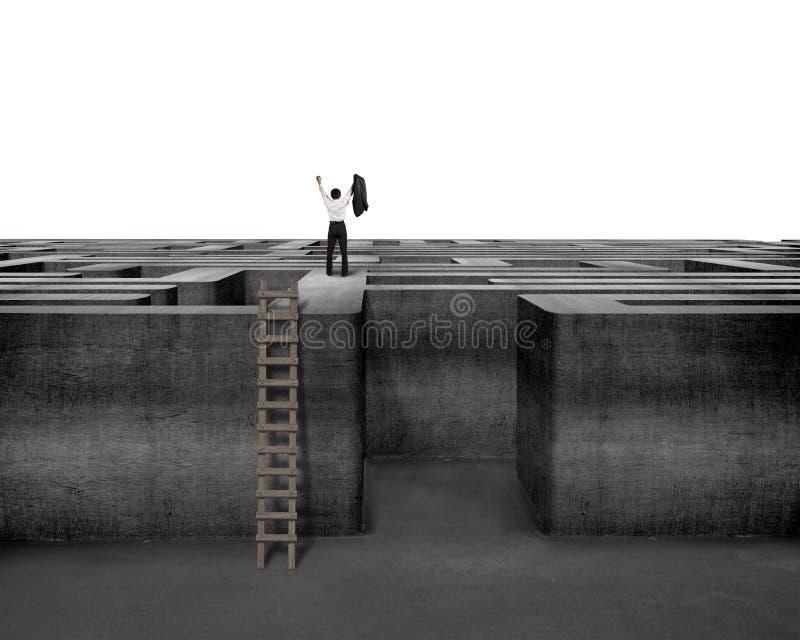 Toegejuichte zakenman die zich bovenop labyrintmuur bevinden met ladder royalty-vrije stock foto