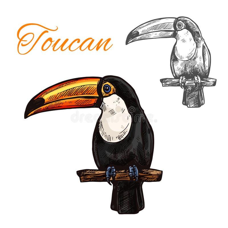 Toekan geïsoleerde schets van tropische exotische vogel vector illustratie