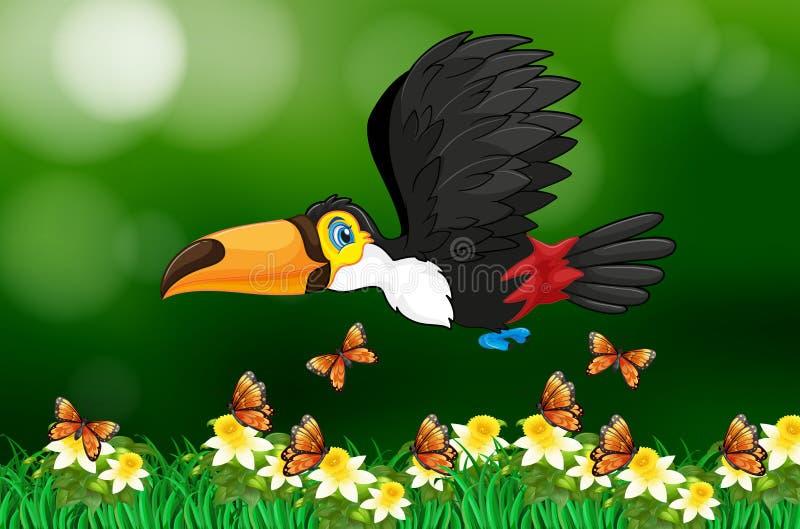 Toekanvogel die in tuin vliegen royalty-vrije illustratie