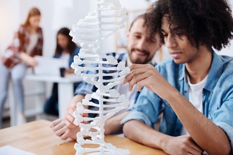 Toekomstige wetenschapper die menselijke DNA-structuur bestuderen royalty-vrije stock afbeeldingen