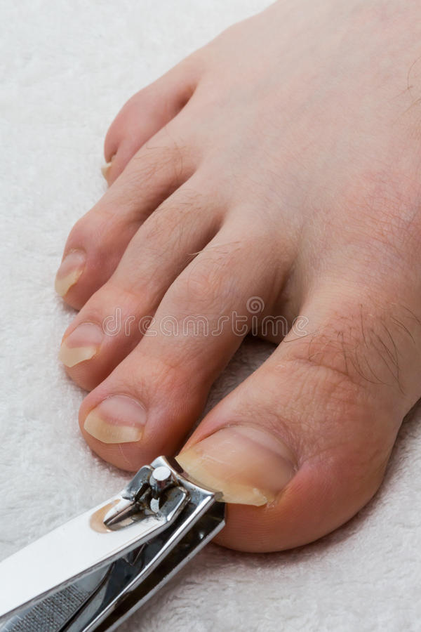 Toenail cutting 01 stock image. Image of pliers, hygiene - 55575585