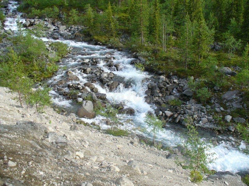 Toendra, bergen, rivier en bos stock fotografie