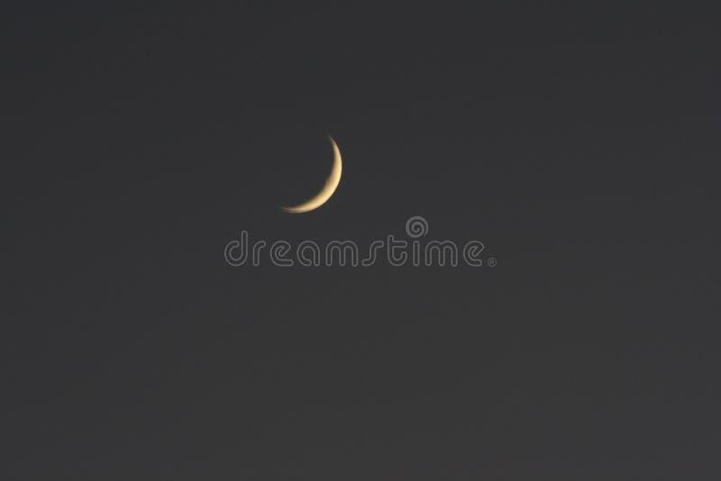 Toenemende maan royalty-vrije stock afbeeldingen