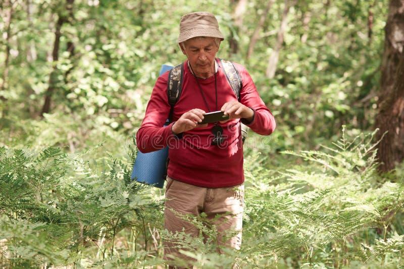 Toerisme, wandeling, bos en technologieconcept Gebruik van de Eldery overhandigt het Kaukasische mannelijke reiziger telefoon, ma stock foto's