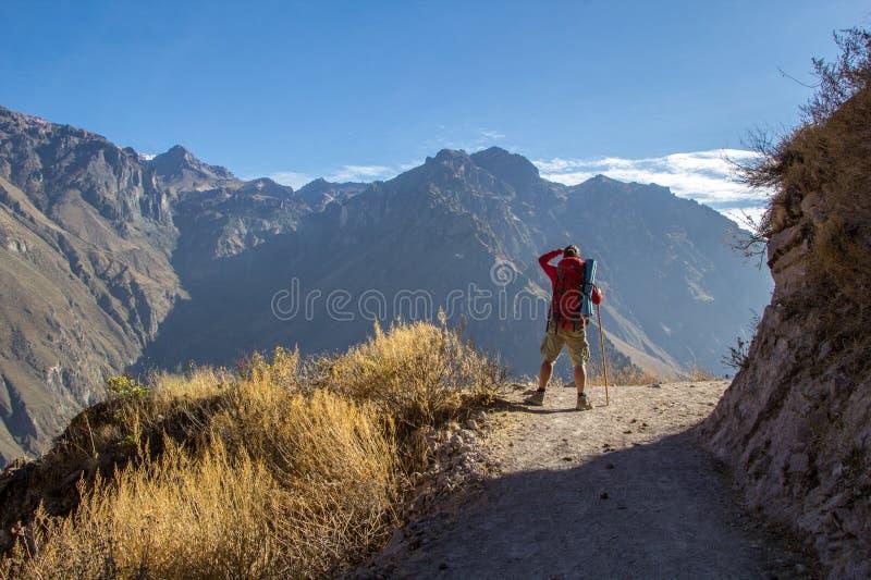 Toerist die bergen bekijken stock foto