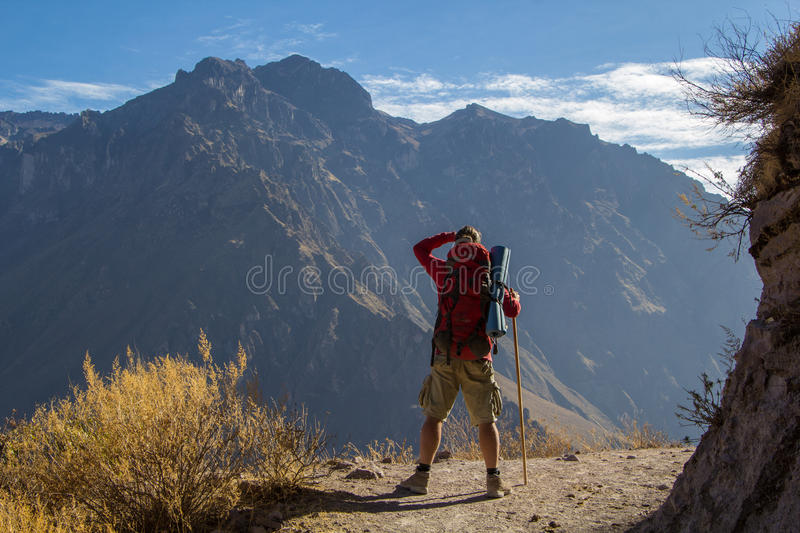 Toerist die bergen bekijken royalty-vrije stock afbeeldingen