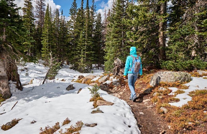 Toerist die met rugzak op sneeuwsleep wandelen stock foto's