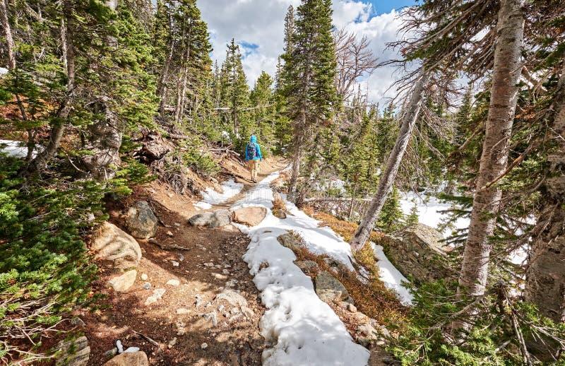 Toerist die met rugzak op sneeuwsleep wandelen stock afbeeldingen