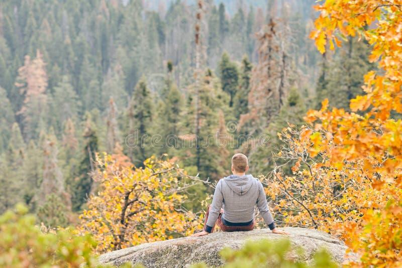 Toerist die in Sequoia Nationaal Park bij de herfst wandelen royalty-vrije stock afbeeldingen