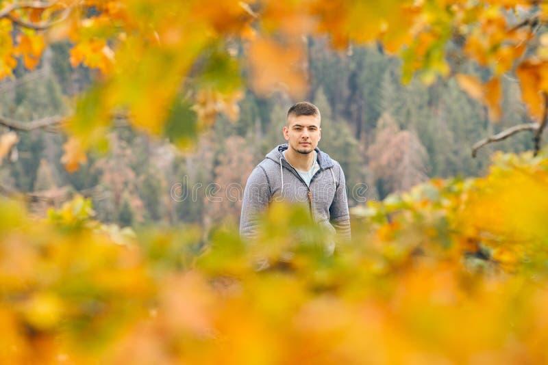 Toerist die in Sequoia Nationaal Park bij de herfst wandelen stock afbeeldingen