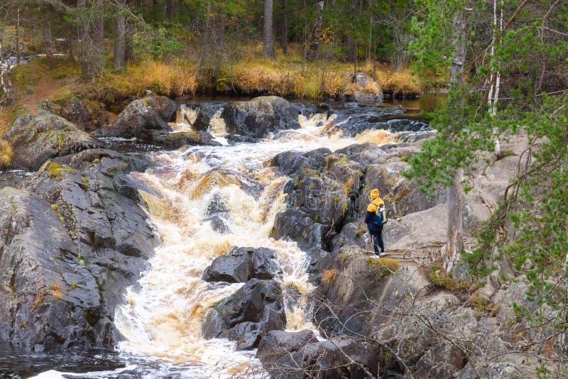 Toerist met een rugzak die een waterval in een park in een mooi landschap van de de herfstaard bekijken Portret van volwassen vro stock foto's