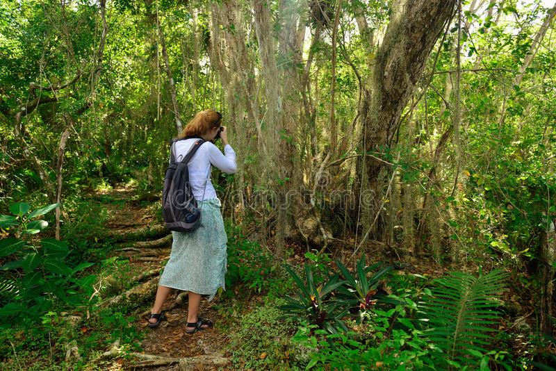 Toerist op de trekking in de wildernis op Dominicaanse Republiek stock foto's