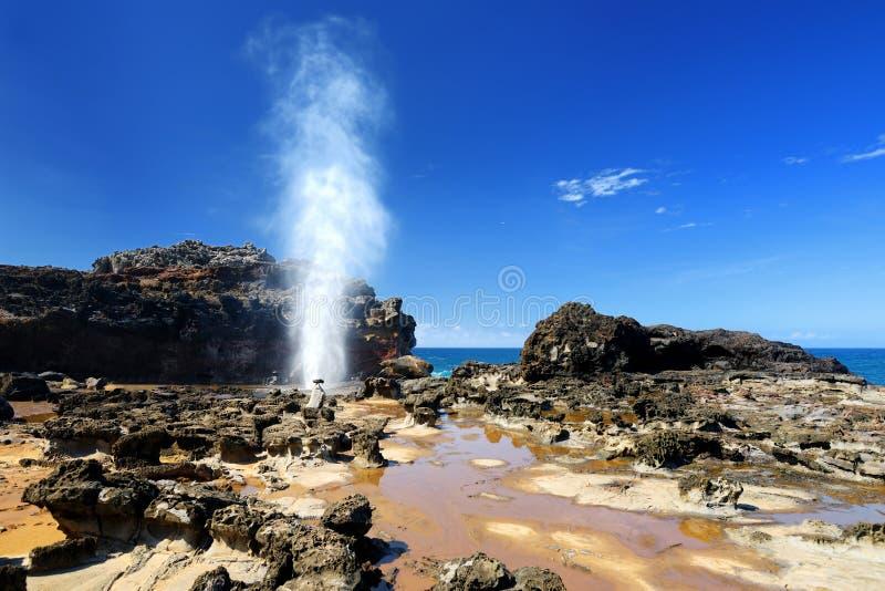 Toeristen die de Nakalele-gietgal op de kustlijn van Maui bewonderen Een straal van water en lucht wordt hevig binnen gedwongen u stock foto's
