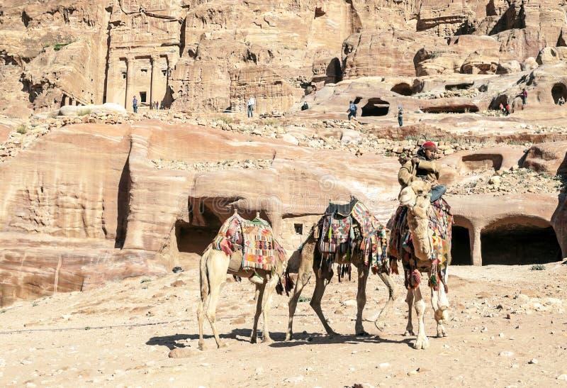 Toeristen die een kameel berijden royalty-vrije stock fotografie