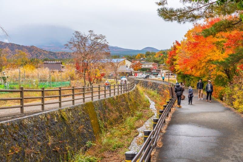 Toeristen die mooie de herfstbladeren en mooie scène van Fufi San bezienswaardigheden bezoeken royalty-vrije stock afbeelding